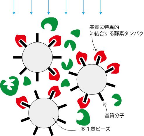 アフィニティークロマトグラフィー