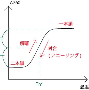 二本鎖DNAの熱融解曲線