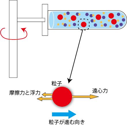 遠心分離における力の図字