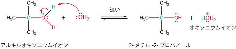 アルキルオキソニウムイオンの脱プロトン化